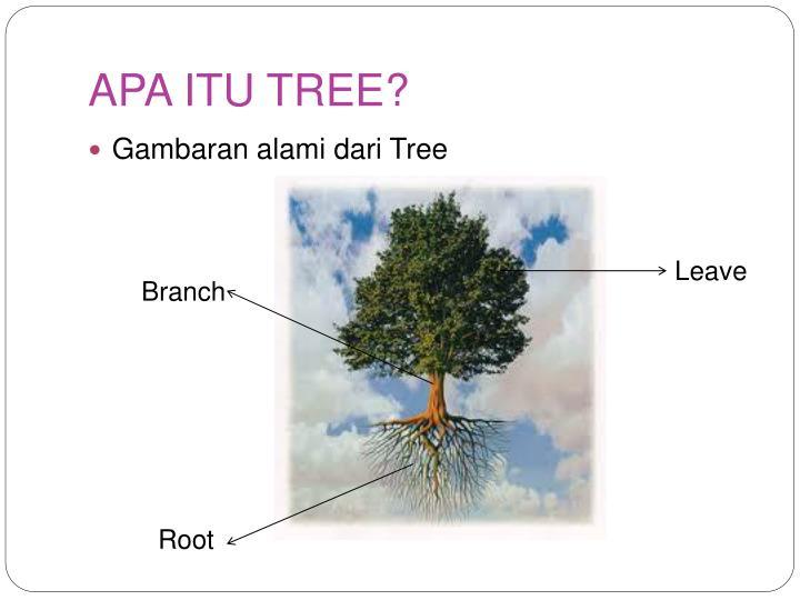 APA ITU TREE?