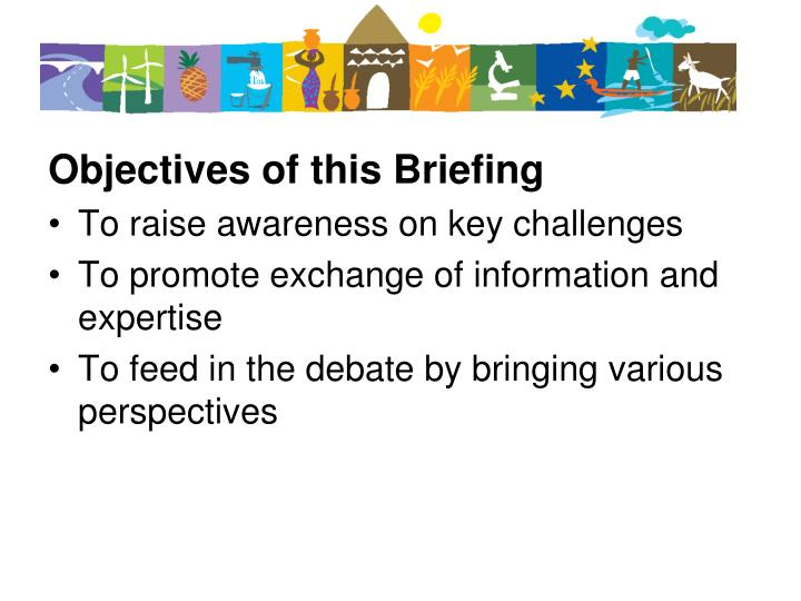 Objectives of this Briefing