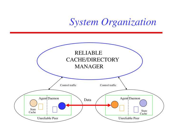 System Organization