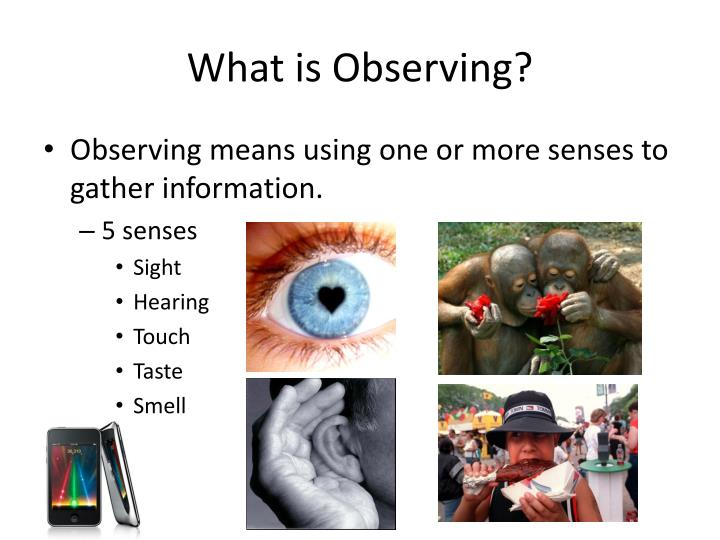 What is Observing?