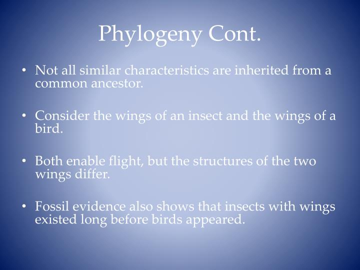 Phylogeny Cont.