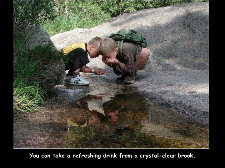 You can take a refreshing drink from a crystal-clear brook.