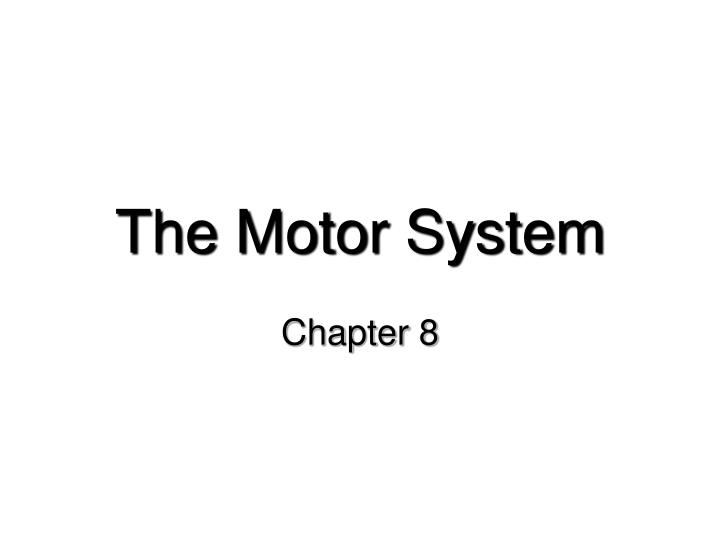 The motor system