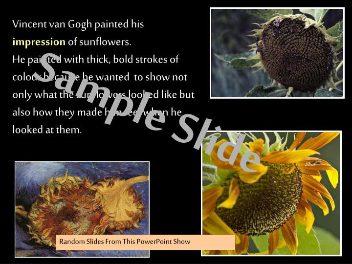 Vincent van Gogh painted his