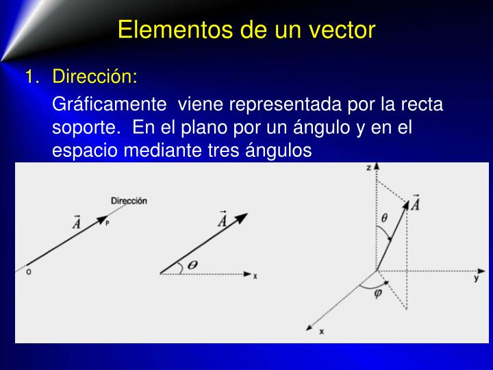 Elementos de un vector