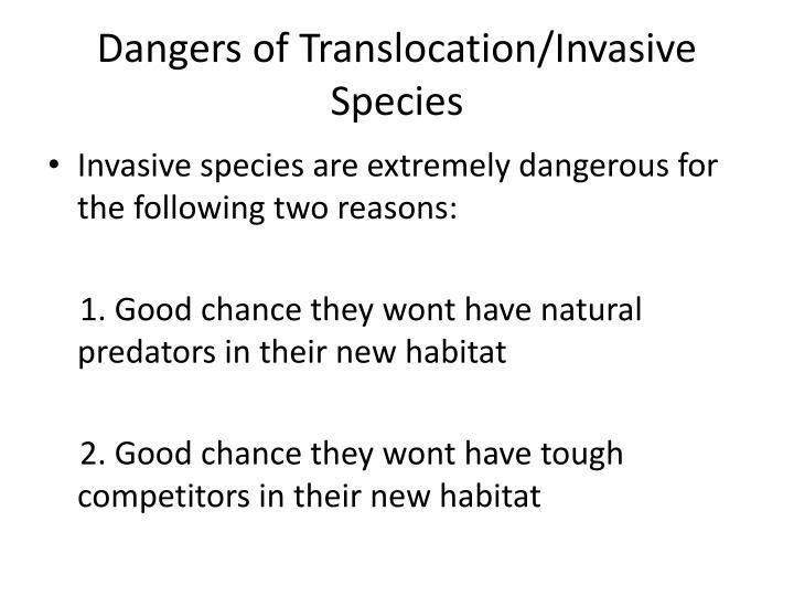 Dangers of Translocation/Invasive Species