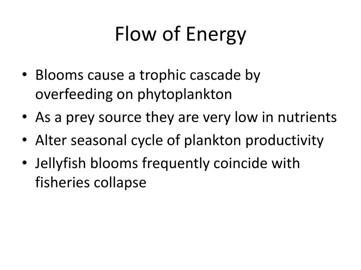 Flow of Energy