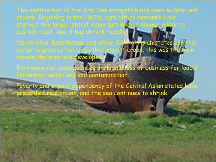 The destruction of the Aral Sea ecosystem has been sudden and severe. Beginning in the 1960s, agricu...