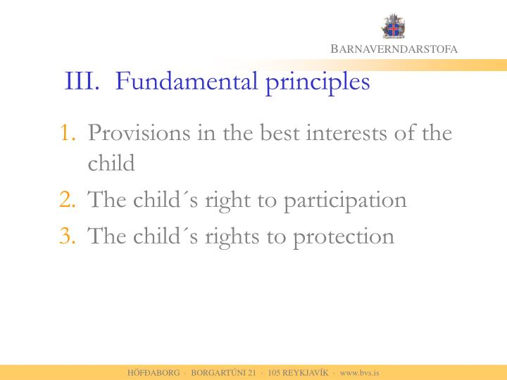 III.	Fundamental principles