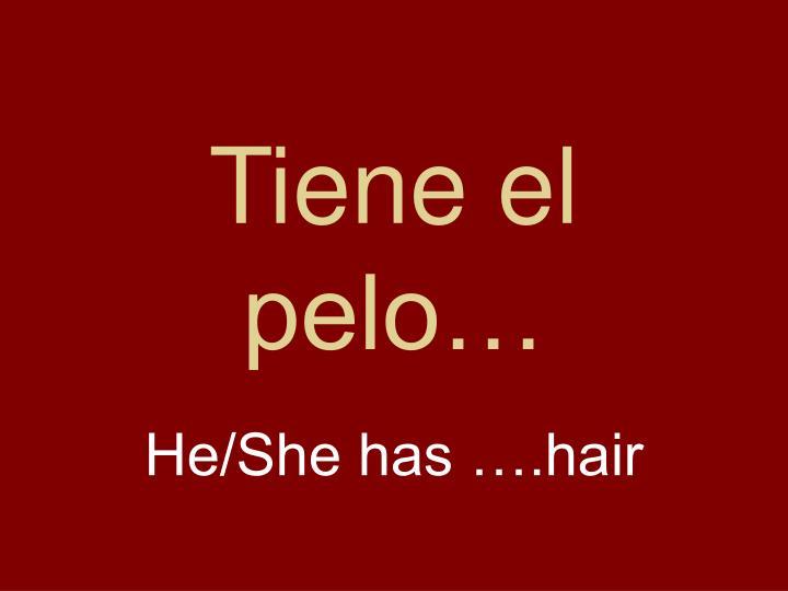 Tiene el pelo…