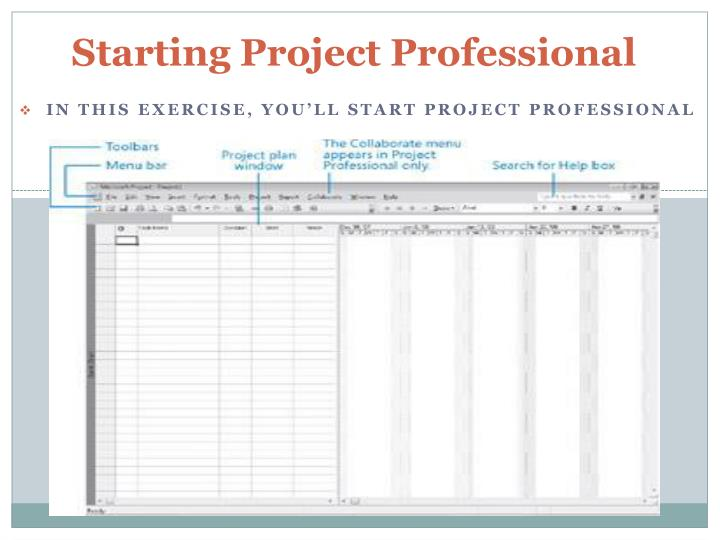 Starting project professional
