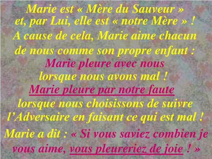 Marie est«Mère du Sauveur»
