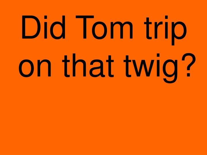 Did Tom trip on that twig?