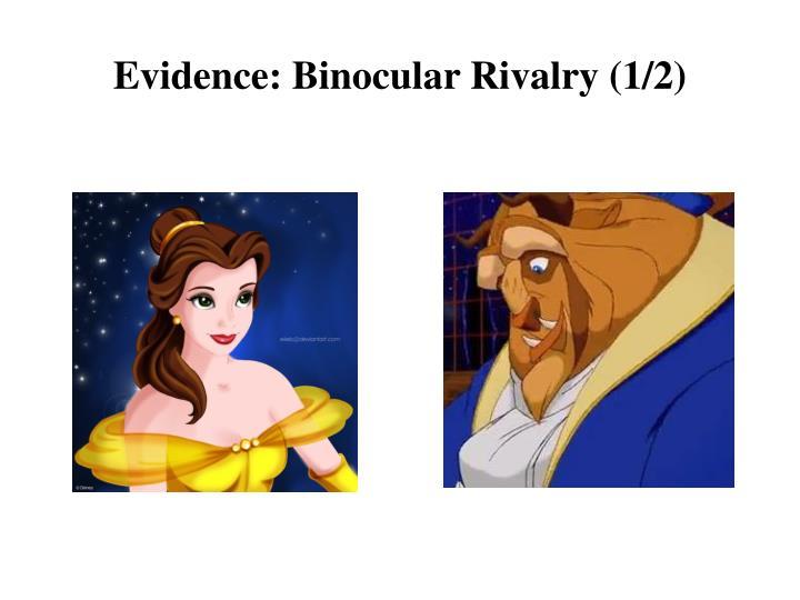 Evidence: Binocular Rivalry (1/2)