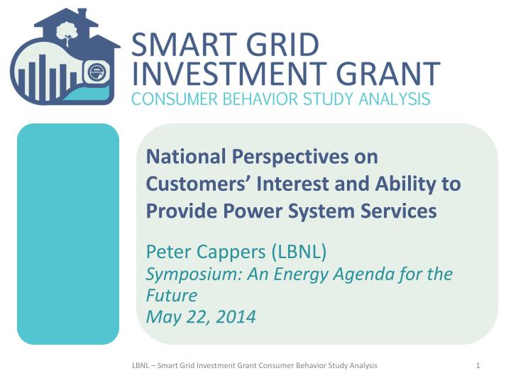 National perspectives on customers interest and ability to provide power system services