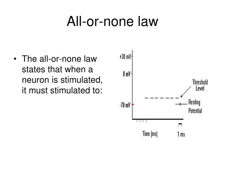 The all-or-none law states that when a neuron is stimulated, it must stimulated to: