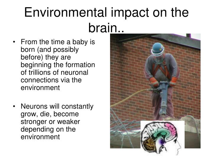 From the time a baby is born (and possibly before) they are beginning the formation of trillions of neuronal connections via the environment