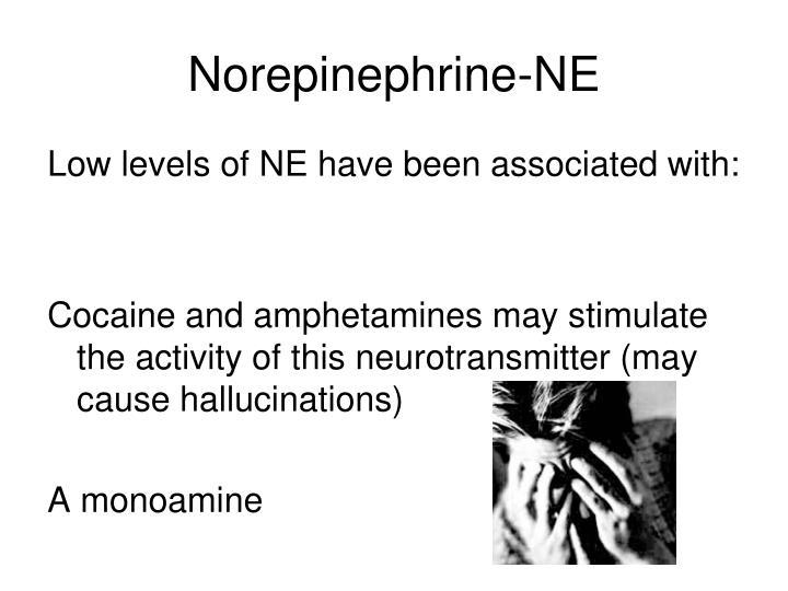 Norepinephrine-NE