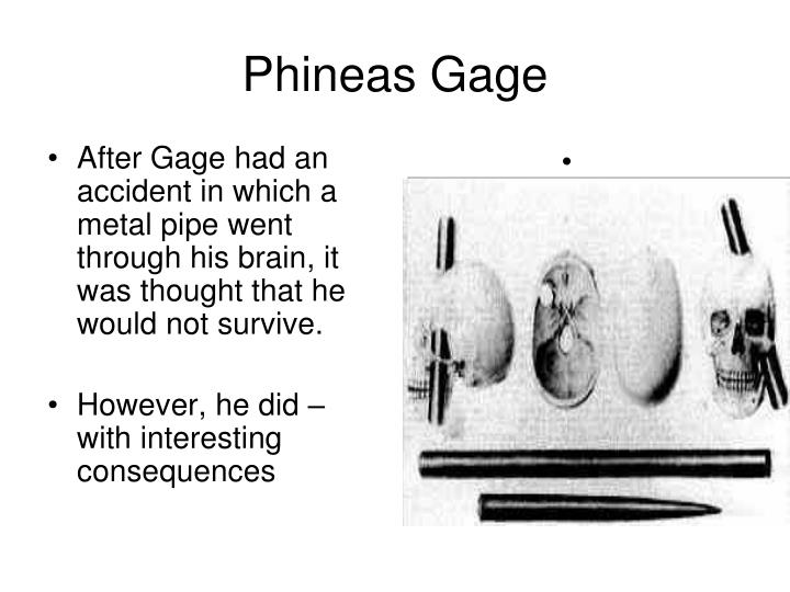 After Gage had an accident in which a metal pipe went through his brain, it was thought that he would not survive.