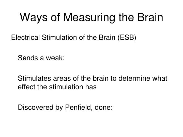 Ways of Measuring the Brain