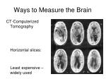 ways to measure the brain