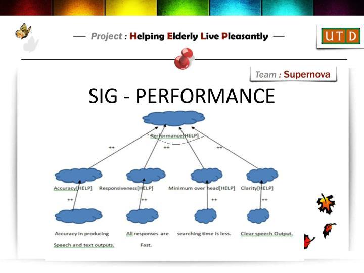 SIG - PERFORMANCE