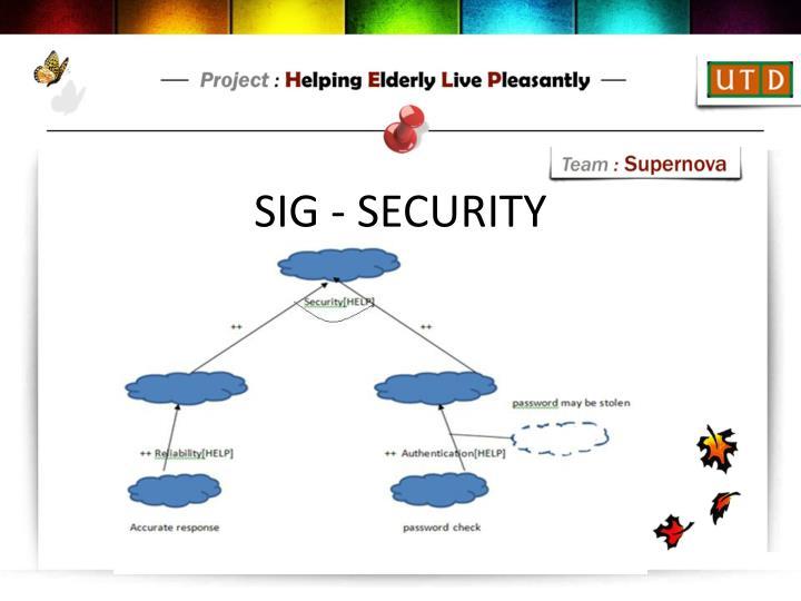SIG - SECURITY