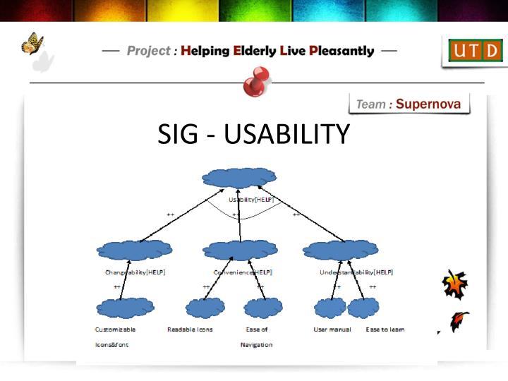 SIG - USABILITY