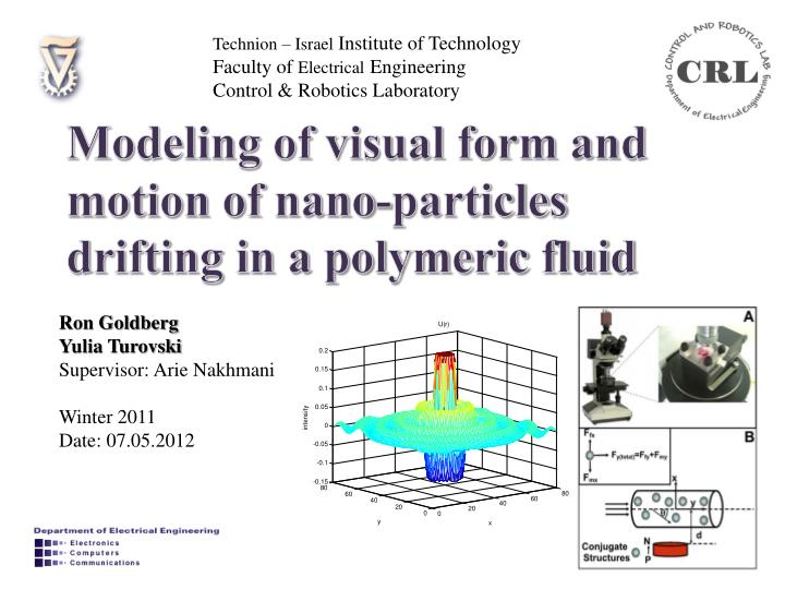 Modeling of visual form and motion of nano particles drifting in a polymeric fluid