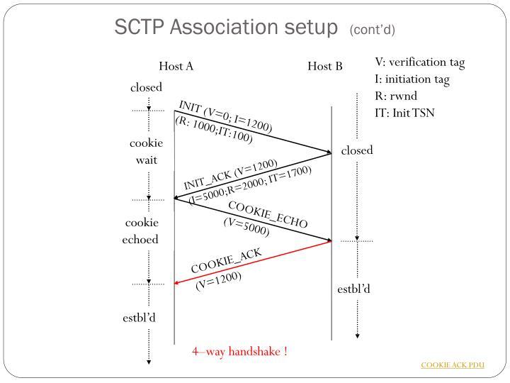 SCTP Association setup