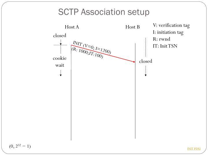 SCTP Association