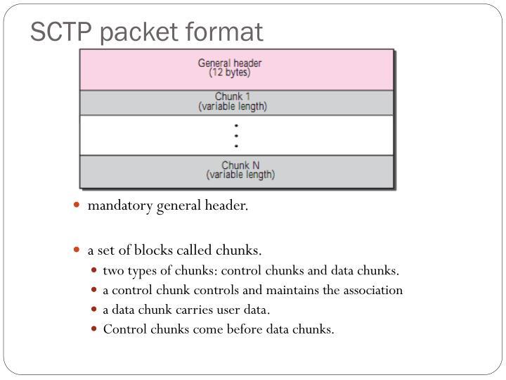 SCTP packet format