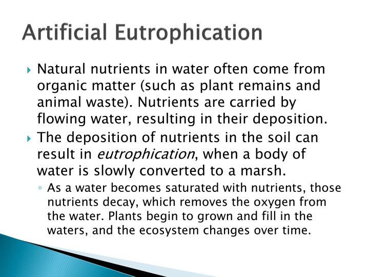 Artificial Eutrophication