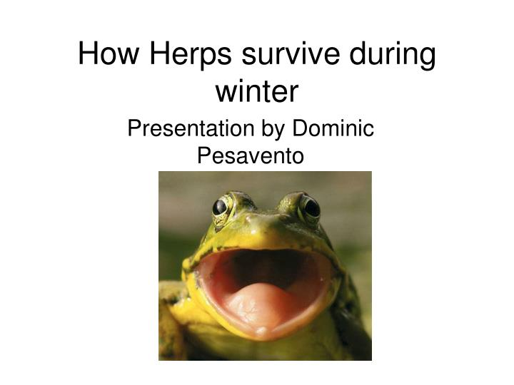 How herps survive during winter