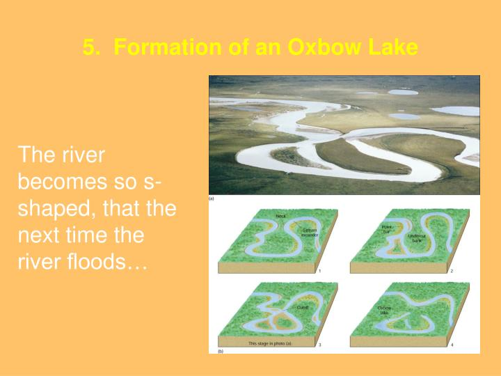 5.  Formation of an Oxbow Lake