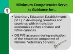 minimum competencies serve as guidance for