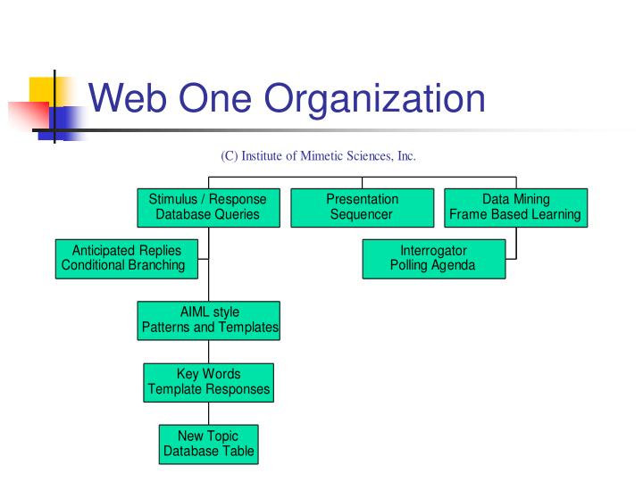 Web One Organization