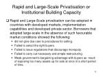 rapid and large scale privatisation or institutional building capacity