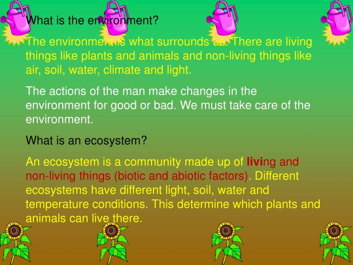 Ppt are you environmentally minded powerpoint for Things made from soil