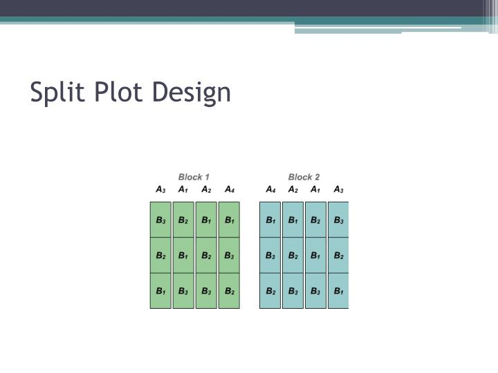 Split Plot Design