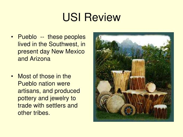 USI Review