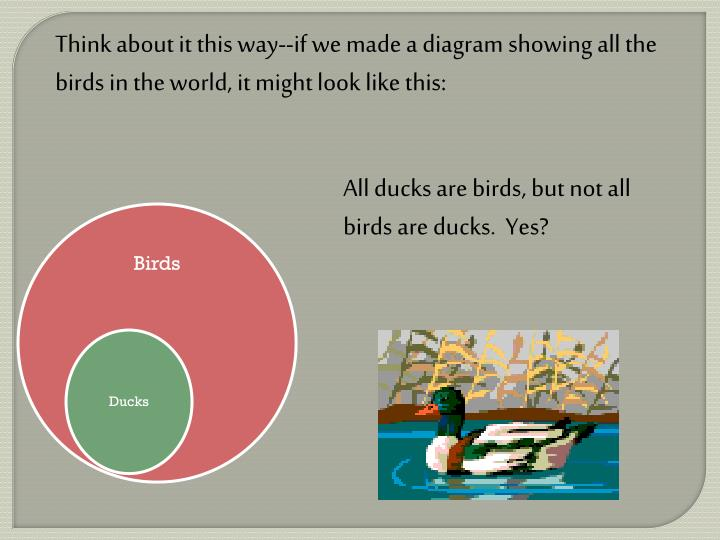 Think about it this way--if we made a diagram showing all the birds in the world, it might look like this:
