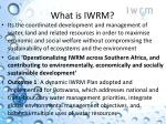 what is iwrm1