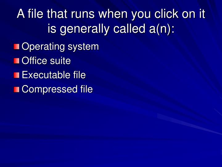 A file that runs when you click on it is generally called a(n):