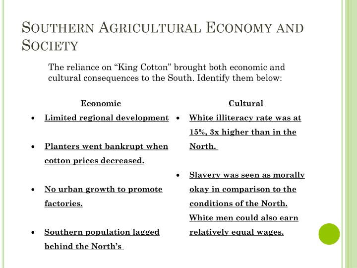 Southern Agricultural Economy and Society