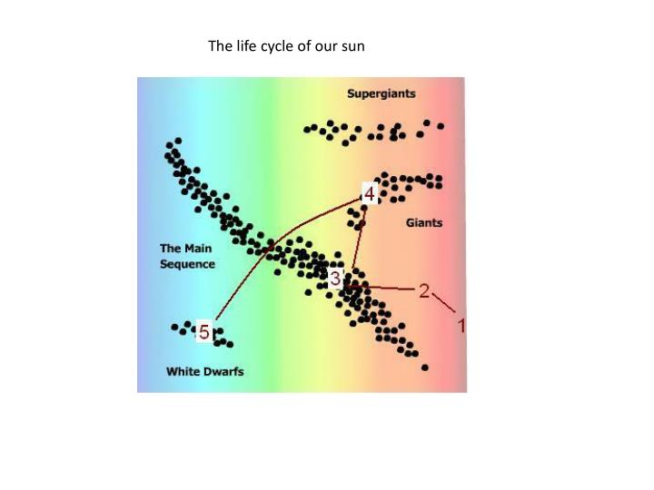 The life cycle of our sun