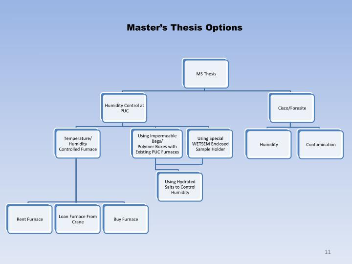 Master's Thesis Options