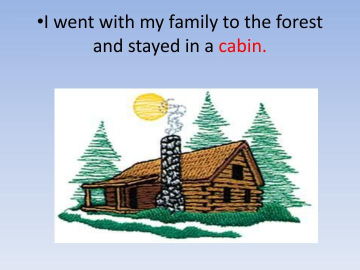 I went with my family to the forest and stayed in a