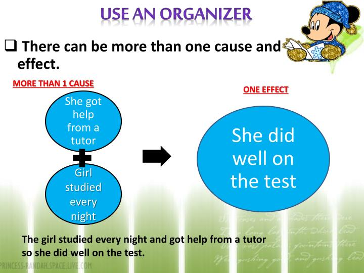Use An Organizer