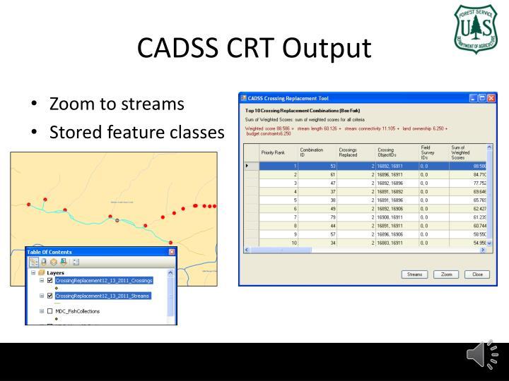 CADSS CRT Output
